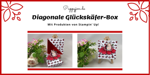 diag Glueckskaefer box 1